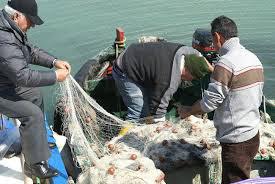 pescatori-crisi