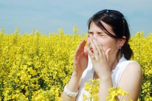allergielam10