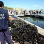 Pesca: Crotone, sequestrati 40 kg di cozze pescate illegalmente
