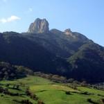 """Parco Aspromonte: al via i """"Campi di volontariato"""""""