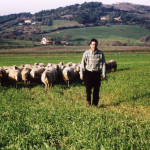 Agricoltura: Coldiretti, salvi i pascoli tradizionali calabresi