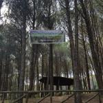 "Lamezia: ""Week End al Parco"" con Sorvolandia e Agepa"