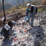 Incendi: Cfs, 18 persone denunciate nel 2016 in Calabria