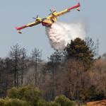 Incendi: Protezione Civile, 15 richieste di intervento aereo