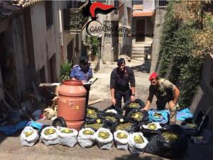 Armi e droga trovate dai carabinieri a Martone e Gioiosa Jonica