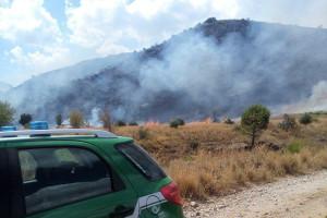 Incendio boschivo, una denuncia a Castrovillari