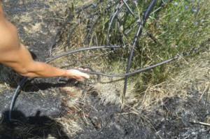 Lamezia: incendiato terreno cooperativa sociale