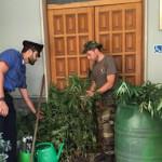 Droga e furto energia lettrica, due arresti nel Reggino