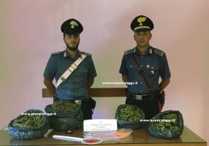 Droga: marijuana in casa un arresto dei carabinieri a Davoli