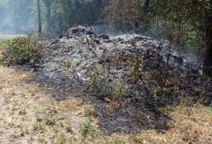 Accende fuoco per bruciare sterpaglie, anziano muore asfissiato