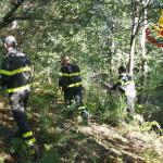 Ritrovato dai Vigili del Fuco 82enne disperso a Villapiana