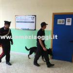 """Droga: Catanzaro, prefetto a sindaci """"Daspo Urbano vicino scuole"""""""