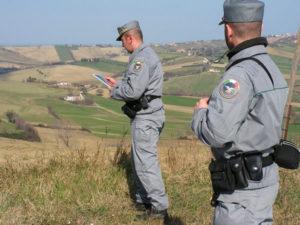 Violazione sigilli terreno sequestrato, una denuncia a Reggio