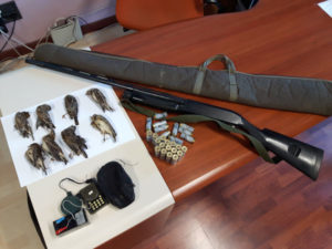 Cosenza: operazione antibracconaggio Polizia Provinciale