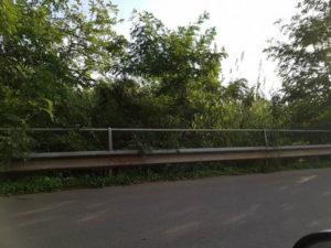 Lamezia: Associazione Quartiere Capizzaglie ripulire il  Piazza