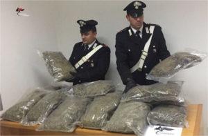 Droga: marijuana per 200.000 euro sequestrata nel Catanzarese