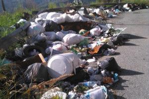 Rifiuti: ripulita area discarica abusiva a Catanzaro