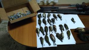Tre cacciatori di frodo denunciati a Caccuci, sequestrati fucili