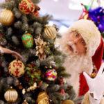 Natale:Coldiretti,record +16% consumi on line, 170 euro/famiglia