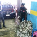 Furti: quattro persone arrestate dai Cc di Villa San Giovanni