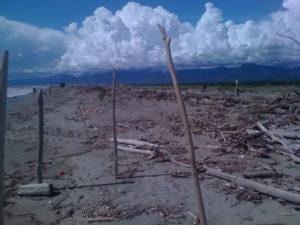 Rifiuti: Paola, denunce Cfs e Guardia Costiera