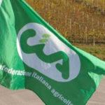 Agricoltura: Cia, manifestazione Coldiretti strumentale