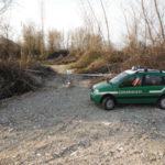 Tagliavano alberi nel letto di un fiume, 3 arresti nel Cosentino
