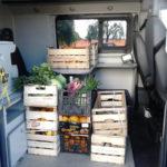 Lamezia: Polizia locale, sequestra 120 chili di frutta e verdura