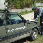 Abusivismo edilizio Parco Aspromonte denunciata una persona