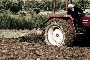 Agricoltura: Coldiretti Calabria, no a scempio territorio regionale