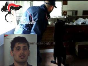 Droga: marijuana in casa 25enne arrestato dai Cc a Stilo