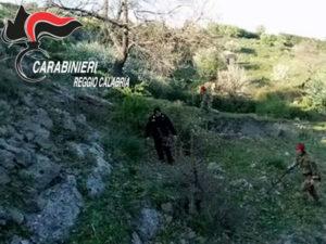 Armi: cartucce nascoste in un terreno 64enne denunciato