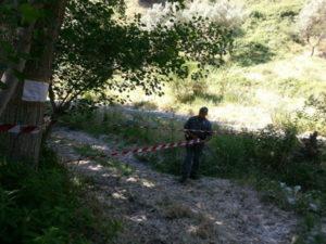 Sequestrato da Cc Forestali tratto del greto torrente Celadi