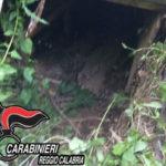 'Ndrangheta: covo latitanti scoperto dai Carabinieri nel Reggino
