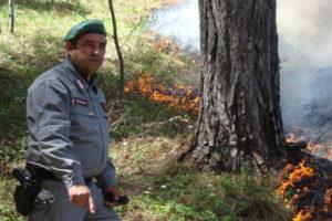 Incendio boschivo, agricoltore denunciato a Taverna