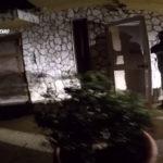 'Ndrangheta: 52 fermi a Lamezia Terme per droga, armi e estorsioni