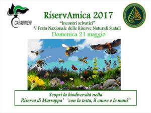 """Ambiente: domenica """"Riservamica"""" nel rifugio di Marrappà"""
