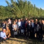 Lamezia: incontro del Rotary Club sulla produzione del kiwi
