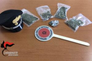 Droga: aveva marijuana on casa, arrestato a San Pietro di Carità