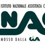 Servizio Civile: 11 posti disponibili presso l'Inac-Cia Calabria