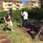 Lamezia: parco giochi Pinna ripulito da Identità Nazionale