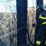 Incendi: fuoco minaccia allevamenti e abitazioni nel Vibonese