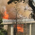 Incendi: vasto rogo a Catanzaro, fiamme vicine a due parchi