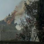 Incendi: vertice Provincia-forze ordine dopo rogo parco Catanzaro
