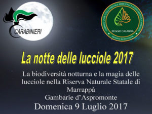 Reggio: Domenica 9 luglio la notte delle lucciole