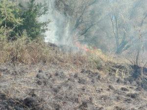Incendi: piromane arrestato a Cessaniti dai Carabinieri