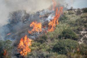 Incendi: la Calabria continua a bruciare, unita' crisi al lavoro