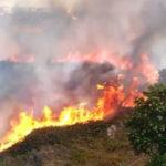 Incendi: criticita' in Calabria, fiamme anche in frazione Cosenza