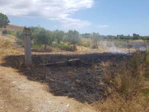 Incendi: 2 piromani in azione nel Crotonese, arrestati da Gdf