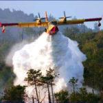 Incendi: vasto rogo nel Cosentino, attesi mezzi aerei